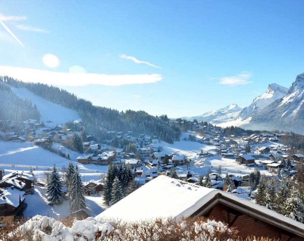Antheus Promotion - Terrasses du Champelet - Vue station de ski